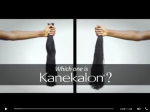 20150611_which_one_is_kanekalon